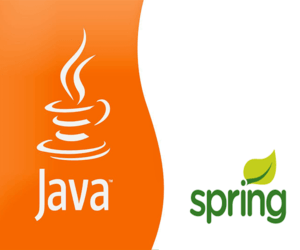 Spring Training in chennai